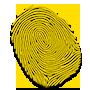 icon-branding-